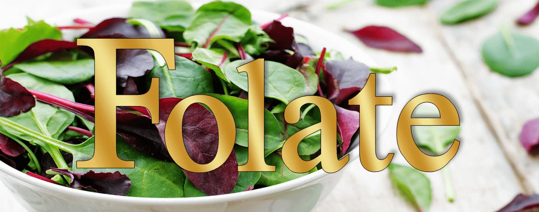 Erectile Dysfunction >> Folate and folic acid benefits - Nutritional Medicine